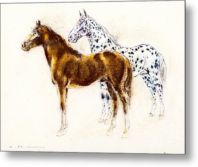 Brown And Appaloosa Horse Metal Print by Kurt Tessmann