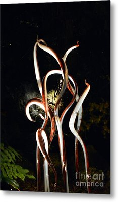 Brown And White Reeds Metal Print by Edna Weber