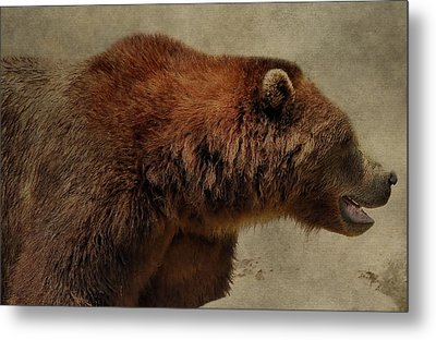 Brown Bear Hunting Metal Print