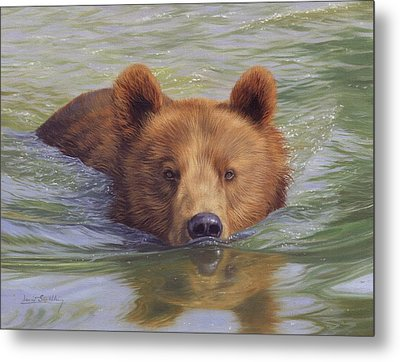 Brown Bear Painting Metal Print by David Stribbling