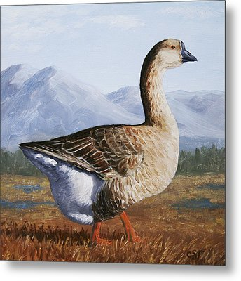 Brown Chinese Goose Metal Print by Crista Forest