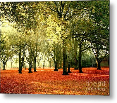 Metal Print featuring the photograph Brown Colors by Boon Mee