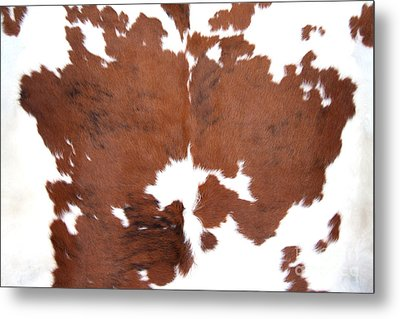 Metal Print featuring the photograph Brown Cowhide by Gunter Nezhoda