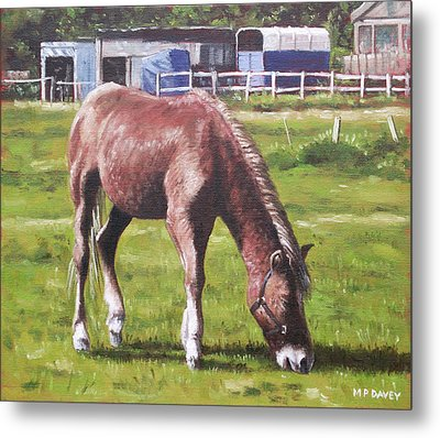 Brown Horse By Stables Metal Print by Martin Davey
