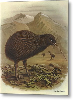 Brown Kiwi Metal Print