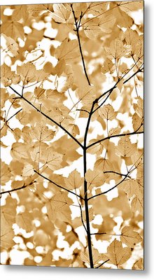 Brown Leaves Melody Metal Print by Jennie Marie Schell