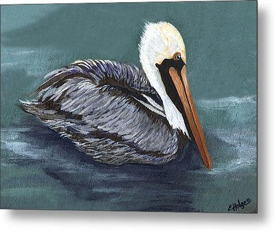 Brown Pelican On Water Metal Print by Elaine Hodges