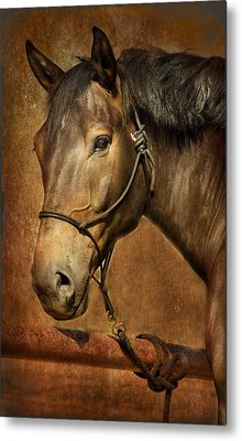Brownie Metal Print
