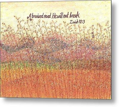 Bruised Reed Metal Print by Catherine Saldana