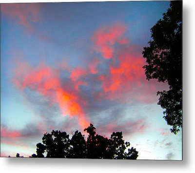 Metal Print featuring the photograph Brush Strokes by Zafer Gurel