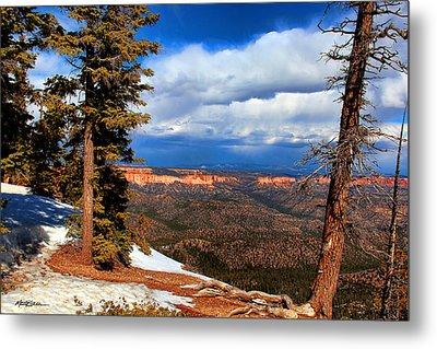 Bryce Canyon Cliff Shot 3 Metal Print by Marti Green