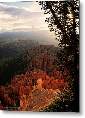 Bryce Canyon Early Morning View Metal Print by Dorothy Cunningham