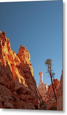 Bryce Canyon Hoodoo - Et Metal Print by R J Ruppenthal