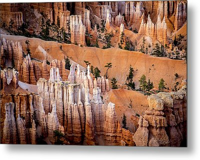 Bryce Canyon Hoodoos Metal Print by Dave Cleaveland