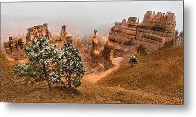 Bryce Canyon National Park Metal Print by Larry Marshall