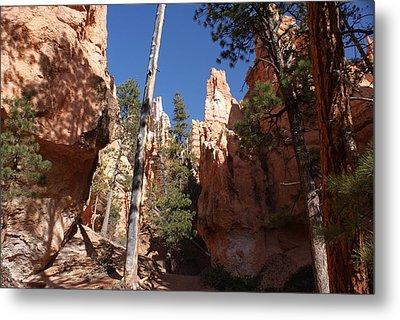 Bryce Canyon Trail Metal Print by Michael J Bauer