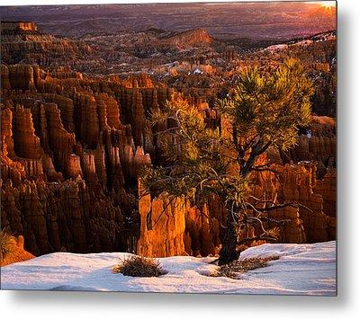 Bryce Canyon Winter Sunrise Metal Print by Leland D Howard