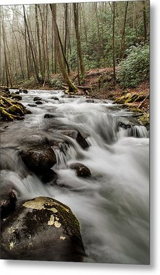 Bubbling Mountain Stream Metal Print by Debbie Green