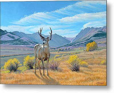 'buck Deer-tom Miner Basin' Metal Print