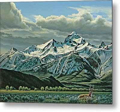 Buck Mountain From Antelope Flat Metal Print by Paul Krapf