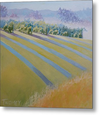 Buck Mountain Vineyards No.2 Metal Print by Catherine Twomey