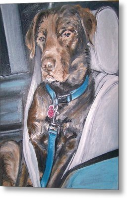 Buckle Up. Metal Print by Martha Suhocke