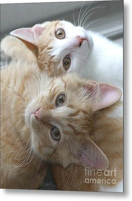 Buddies For Life Metal Print