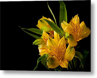 Metal Print featuring the photograph Budding Flowers by Sennie Pierson