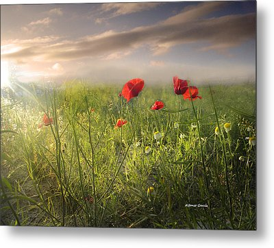 Metal Print featuring the photograph Buenos Dias by Alfonso Garcia