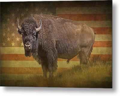 Buffalo American Icon Metal Print