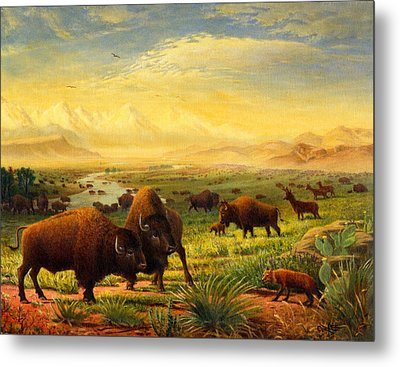 Buffalo Fox Great Plains Western Landscape Oil Painting - Bison - Americana - Historic - Walt Curlee Metal Print by Walt Curlee