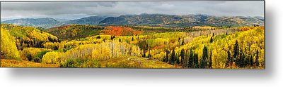 Buffalo Pass Steamboat Springs Co Metal Print