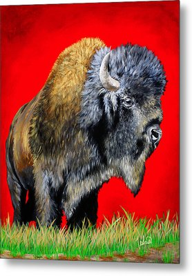 Buffalo Warrior Metal Print