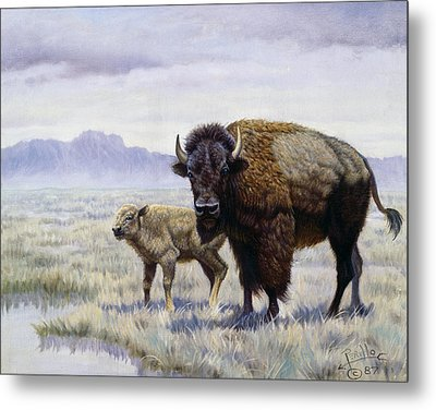 Buffalo Watering Hole Metal Print by Gregory Perillo