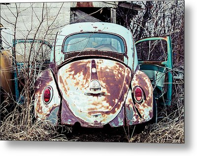 Metal Print featuring the photograph Buggin' Out by Brian Bonham
