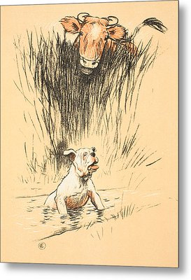 Bull And Dog In Field Metal Print by Cecil Charles Windsor Aldin