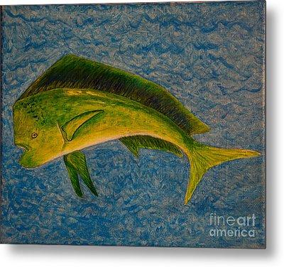 Bull Dolphin Mahimahi Fish Metal Print