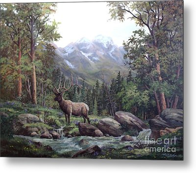 Bull Meadow Metal Print by W  Scott Fenton