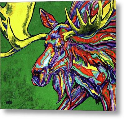 Bull Moose Metal Print by Derrick Higgins