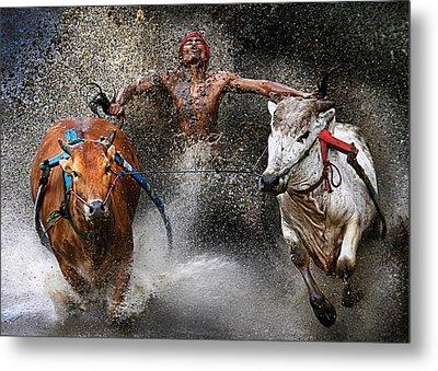 Bull Race Metal Print
