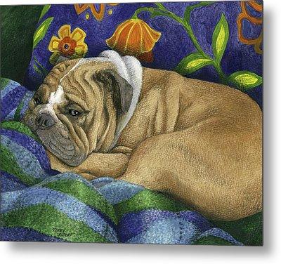 Bulldog Napping Metal Print