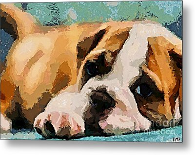 Bulldog Puppy Metal Print by Dragica  Micki Fortuna