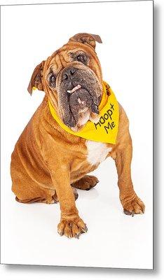 Bulldog Wearing Adopt Me Bandana Metal Print
