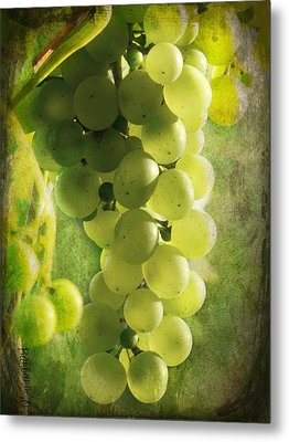 Bunch Of Yellow Grapes Metal Print by Barbara Orenya