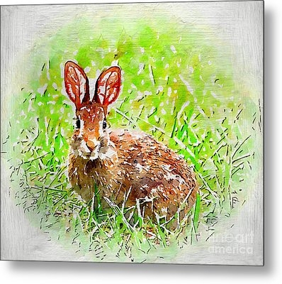 Bunny - Watercolor Art Metal Print by Kerri Farley