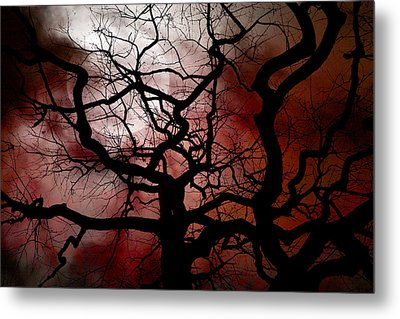 Reaching For The Moon Metal Print