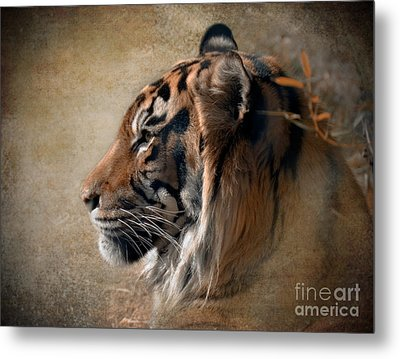 Burning Bright Metal Print by Betty LaRue