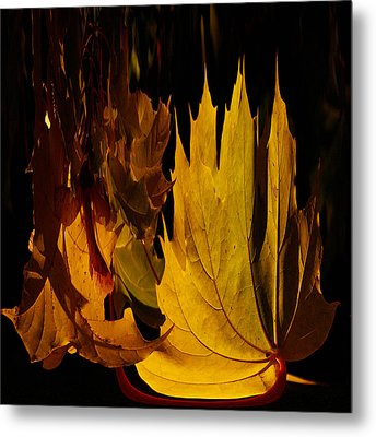 Burning Fall Metal Print by Jouko Lehto