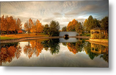 Burning Trees Metal Print by Anthony J Wright