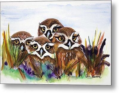 Burrowing Owls Metal Print by Dale Bernard